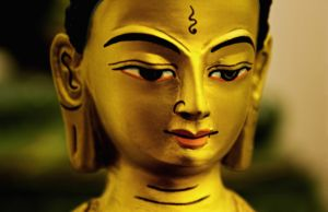 buddha-844144-m
